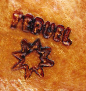 Teruel serrano ham