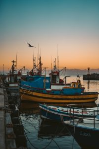 Fishing boats port Anchovies